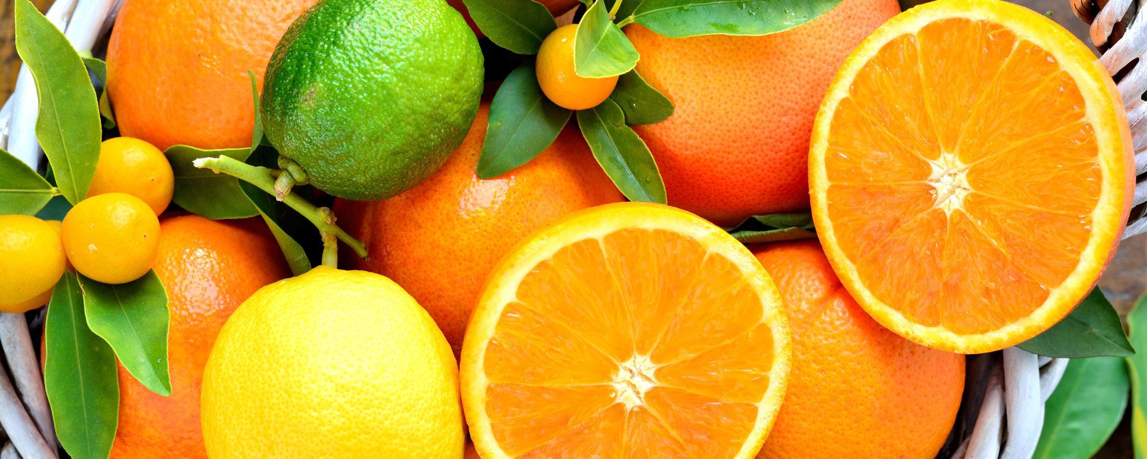 Sadnice agruma / Sadnice voća / Granum Agro Centar
